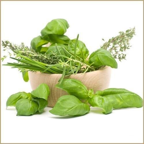 provençal herbs infused olive oil