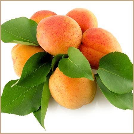 apricot fruit pulp vinegar