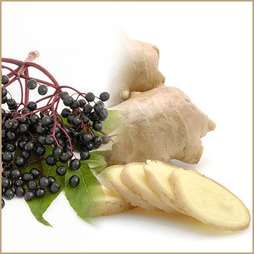 elderberry & ginger balsam vinegar