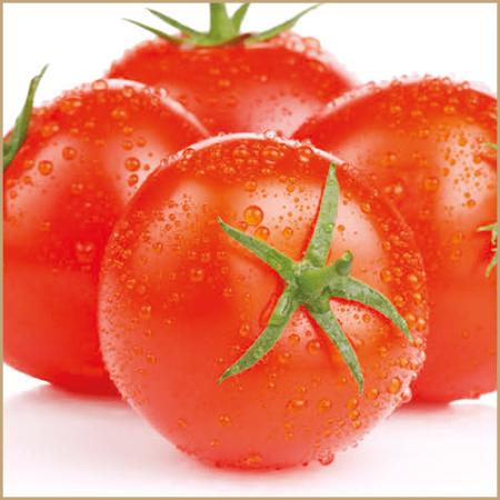 tomato fruit pulp vinegar