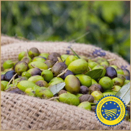 montalbano igp extra virgin olive oil